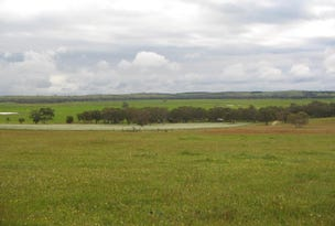 1439 Swedes Flat Road, Mundulla West, SA 5270
