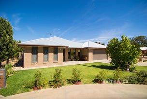 17 Wentworth Street, Wentworth, NSW 2648