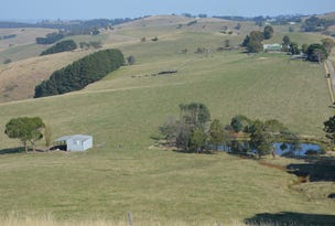 99 FOSTERS ROAD, Wild Dog Valley, Vic 3953