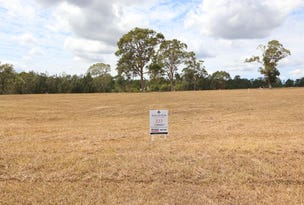 Lot 223 Hillview, Louth Park, NSW 2320