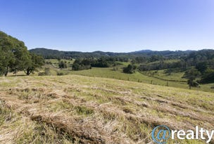Lot 3, 146 Tewinga Lane, Bowraville, NSW 2449