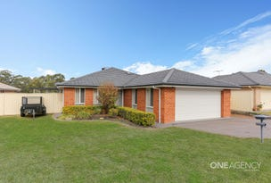 16 James House Close, Singleton Heights, NSW 2330