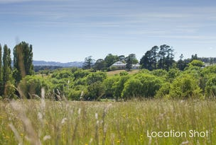 Lot 110 Throsby Views, Moss Vale, NSW 2577