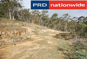 Lot 1, Fosters Gully Road, New Norfolk, Tas 7140