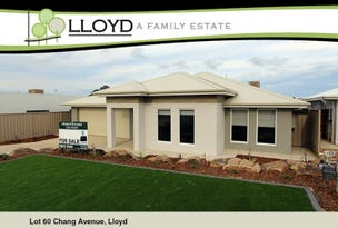 60 Chang Avenue, Lloyd, NSW 2650