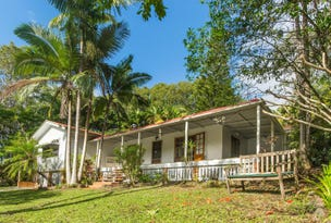 172 Left Bank Road, Mullumbimby Creek, NSW 2482
