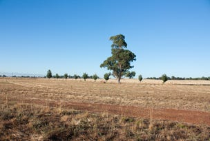 Dunedoo, address available on request