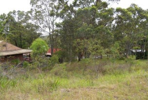 20 Curlew Crescent, Nerong, NSW 2423