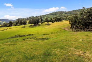 Lot 2 Rifle Range Road, Cygnet, Tas 7112