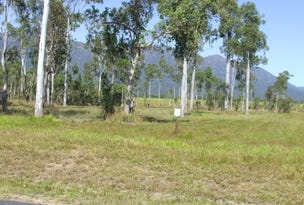 Lot 17 Ellerbeck Road, Carruchan, Qld 4816