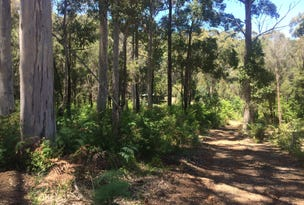 Lot 12 Browns Road, Pemberton, WA 6260
