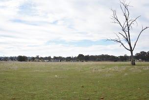 Lot 1120/1121, 4939 Goldfields Way, Temora, NSW 2666