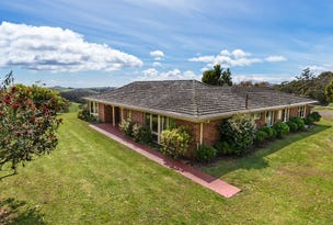 619 Kindred Road, Kindred, Tas 7310
