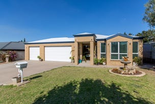 13 Dundale Crescent, Estella, NSW 2650