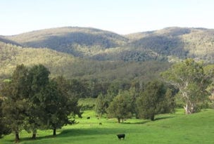 Lot 1 Majors Creek Mountain Road, Araluen, NSW 2622