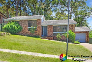 4 Lampeter Close, Mount Hutton, NSW 2290