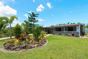 220 Stafford Road, Bloomsbury, Qld 4799