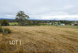 0 Tunnack Road, Parattah, Tas 7120