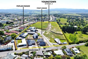 PINOT PARADE, Youngtown, Tas 7249