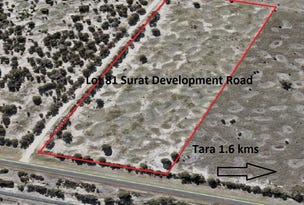 8.35 ACRES Lot 81 Surat Development Road, Tara, Qld 4421