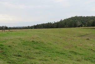 Lots 425 Sextonville Road, Doubtful Creek, NSW 2470