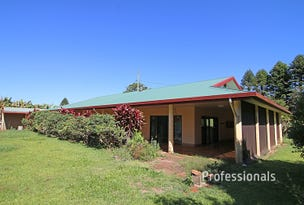 2134 Old Palmerston Highway, Ravenshoe, Qld 4888
