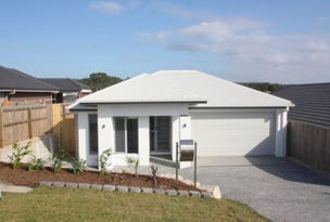 20 McLachlan Circle, Willow Vale, Qld 4209