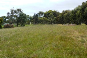 Lot 1, Cadogan Street, Currency Creek, SA 5214