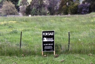 Lot 4, Monroe, Branxholme, Vic 3302