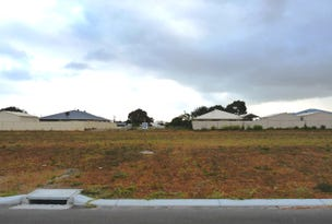 Lot 227 Thistle Avenue, Bandy Creek, WA 6450