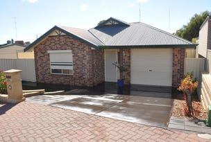 21 Edwards Crescent, Waikerie, SA 5330