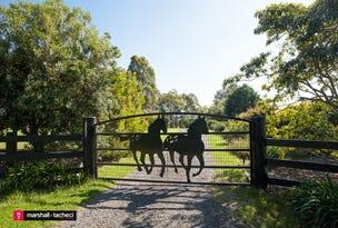 146 Coolagolite Road, Coolagolite, NSW 2550