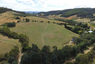 143477/2 and 128505/2 Wallace Road, Cygnet, Tas 7112