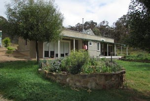 Chewton Bushlands, address available on request
