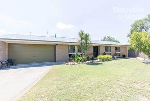 484 Henderson Street, Lavington, NSW 2641