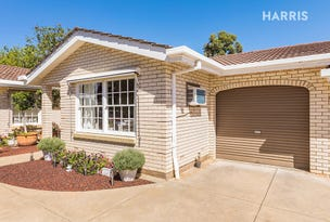 3/12 Williams Avenue, St Morris, SA 5068