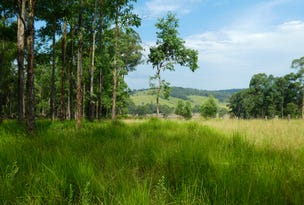 216 Beaury Creek Road, Urbenville, NSW 2475