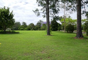 Lot 101, 51 Shaws Road, Beerwah, Qld 4519