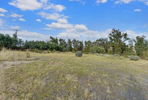 2434 Arthur Highway, Copping, Tas 7174