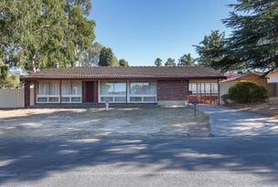 25  Cotton Street, Fairview Park, SA 5126