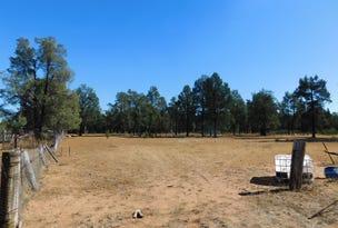 168 Namoi St, Baradine, NSW 2396
