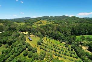 253 Palmvale Road, Murwillumbah, NSW 2484