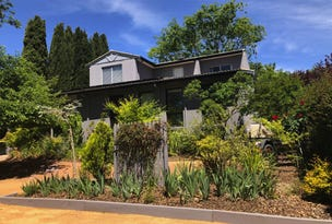 19 Discovery St, Red Hill, ACT 2603