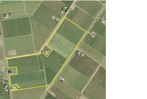 Farm 1561 Pratt Road, Yenda, NSW 2681