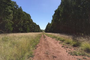 Haly Creek Road, Goodger, Qld 4610