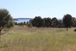 Lot 1, 351 Pinta Track, Mount Dutton Bay, SA 5607