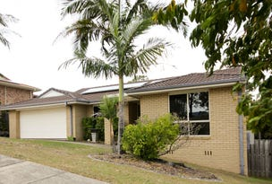 25 Palmerston Drive, Oxenford, Qld 4210