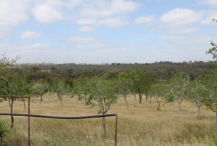 Lot 1  Northern Highway, Ladys Pass, Vic 3523