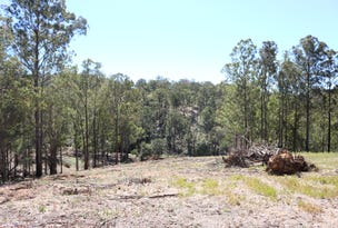 Lot 1 DP 102782 1402 Nowendoc Road, Mount George, NSW 2424
