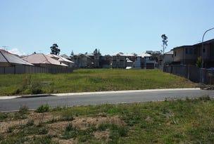 Lot 217, San Cristobal Drive, Green Valley, NSW 2168